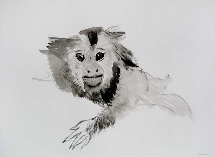 Aap no. 2, inkttekening 2009, 70 x 100 cm, een uit reeks van 5