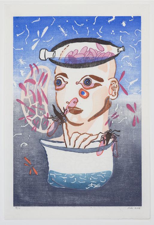 Verzamelaar, 2003, 50,9 x 34 cm, oplage van 11